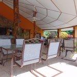 GumboLimbo Jungle Resort Foto