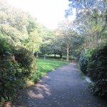Attractive path