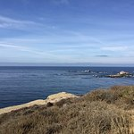 Photo de Point Lobos State Reserve