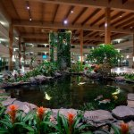 Atrium Koi Pond