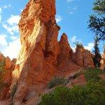 Photo of Navajo Trail