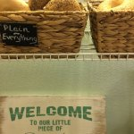 Amazing breakfast sandwiches. And real bagels...a rarity in Florida!