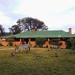 Photo de Ngorongoro Rhino Lodge