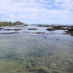 Photo of Kapoho Tide Pools