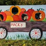 Photo Prop At Mack's Apple