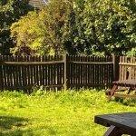 Unkempt garden area