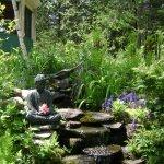 Jardin d'eau coin zen pour méditer