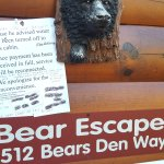 Be aware of the Hidden Spring Resorts. HOA punishes guests because Bear Escape cabin owner owed