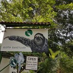 Photo of Sloth Sanctuary of Costa Rica