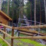 Zip World Fforest Coaster