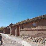 Altiplanico Atacama Foto