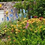 Walled garden rainbow coloured planting