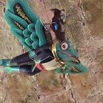 Photo of Lidojosa Varde The Flying Frog