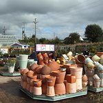 Lots of planters and pots to choose