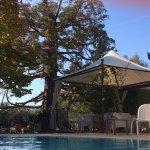 Cortona Resort & Spa resmi