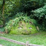 Photo of The Lost Gardens of Heligan
