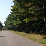 Illinois Beach State Park Campground