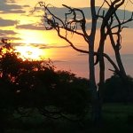 Photo de Cooinda Lodge Kakadu
