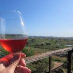 Photo de Alto de la Ballena Vineyards