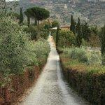 Relais Il Falconiere & Spa Foto