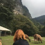 Andes EcoTours Foto