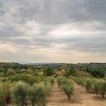 Agriturismo Marciano Foto