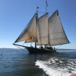 Foto de Schooner Stephen Taber Day Cruises