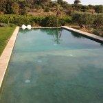 """A bonne température, la piscine propose quelques longueurs """"au milieu"""" de la vigne."""
