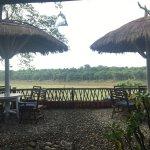 Photo de Safari Narayani Hotel