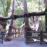Zdjęcie Iya Kazura Bridge