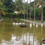 Photo de The Windflower Resort & Spa, Mysore