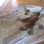 Dirty slab of wood showing plastic