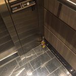 Bottle of beer left in the elevator