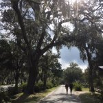 One of the paths at Bonaventure Cemetery