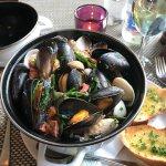 Shelffish Pot