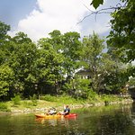 Big Walnut Creek is a great place to kayak