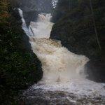 Foto de Raymondskill Falls