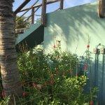 Foto de Caribbean Club Bonaire