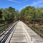 Foto van Swinging Bridge