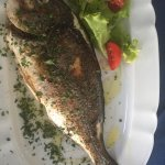 Fresh sea-bass