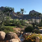 Beautiful views of Camelback Mountain