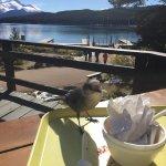 Foto de Maligne Lake's View Restaurant