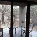 Foto de Bushwise Safaris