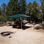 Photo de Mather Campground