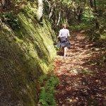 Muraille naturelle sur les Sentiers de l'Estrie