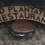 Photo de Old Plantation