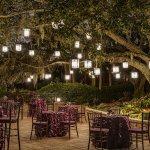 Oak Terrace Reception