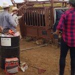 Photo de Burnt Well Guest Ranch