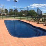 These are a couple of photos of the pool and wild kangaroo that are very local to the property.