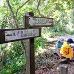 Photo of Zhuilu Old Trail